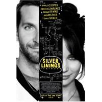 Umut Işığım (Silver Linings Playbook) (VCD)