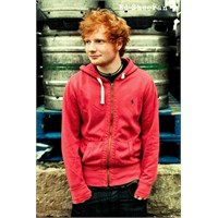 Ed Sheeran Pin Up Maxi Poster