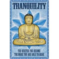 Budda Tranquility Maxi Poster