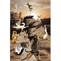 Yoga Dogs Canyon Maxi Poster