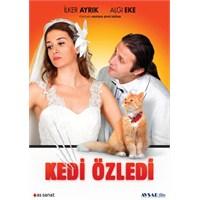 Kedi Özledi (DVD)