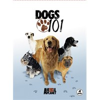Dogs 101 (DVD)