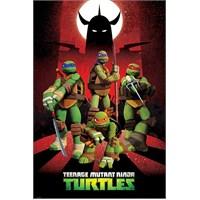 Ninja Turtles Charaters Mini Poster