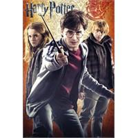 Harry Potter Trio Maxi Poster