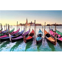 Venice Gondolas Maxi Poster