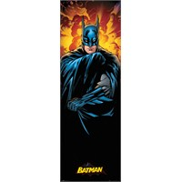 Dc Comics Batman Door Poster