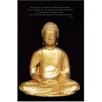 Maxi Poster Budda