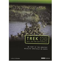 Trek: Spy On The Wildebeest (Antiloplar: Göç Yolundaki Casus)
