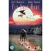 Fly Away Home (Eve Uçuş) ( DVD )