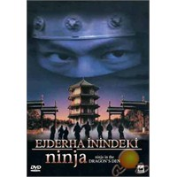 Nınja In The Dragon''s Den (Ejderha İnindeki Ninja) ( DVD )