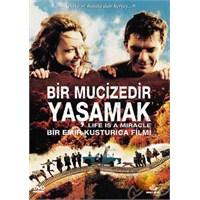 Life Is A Miracle (Bir Mucizedir Yaşamak) ( DVD )