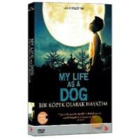My Life As A Dog (Bir Köpek Olarak Hayatım)
