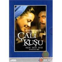 Çalıkuşu (3 DVD)