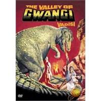 Valley Of Gwanghı (Gwanghı Vadisi) ( DVD )