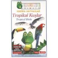 Tropikal Kuşlar (Tropıcal Birds) ( VCD )