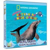 Eğlenceli Hayvanlar Ansiklopedisi - 4 (Denizlerin Derinliklerinde)