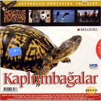 Hayvanlar Dünyasına Yolculuk (Kaplumbağalar) ( VCD )