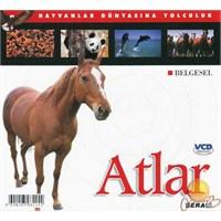 Hayvanlar Dünyasına Yolculuk (Atlar) ( VCD )