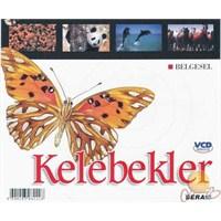 Hayvanlar Dünyasına Yolculuk (Kelebekler) ( VCD )