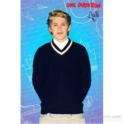 One Direction Niall Pop Maxi Poster