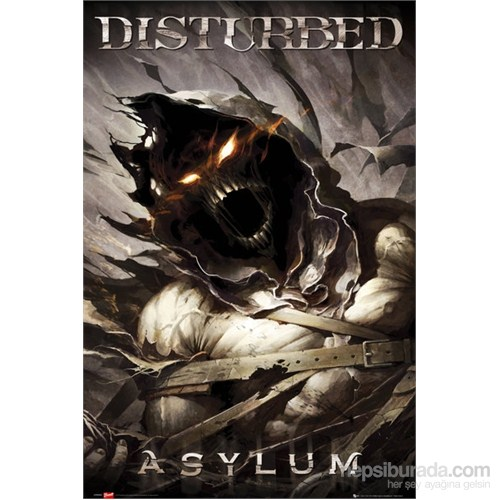 Disturbed Asylum S.O.S Maxi Poster