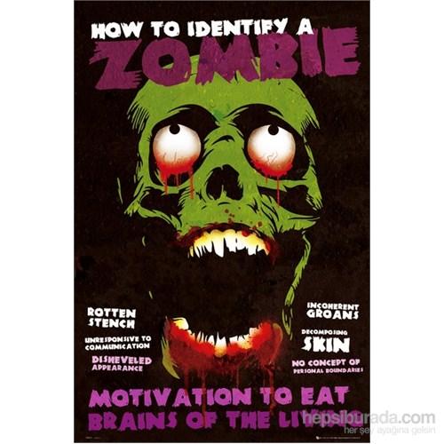 Identify A Zombie Maxi Poster