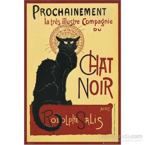 Chat Noir Maxi Poster