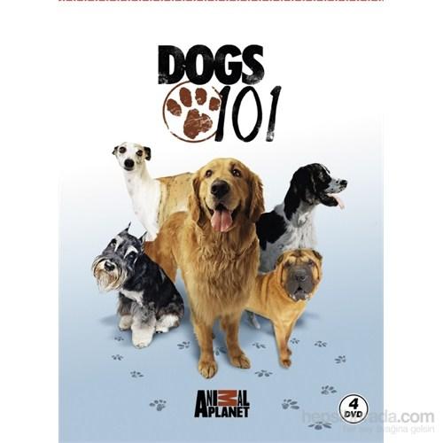 Dogs 101 (DVD)