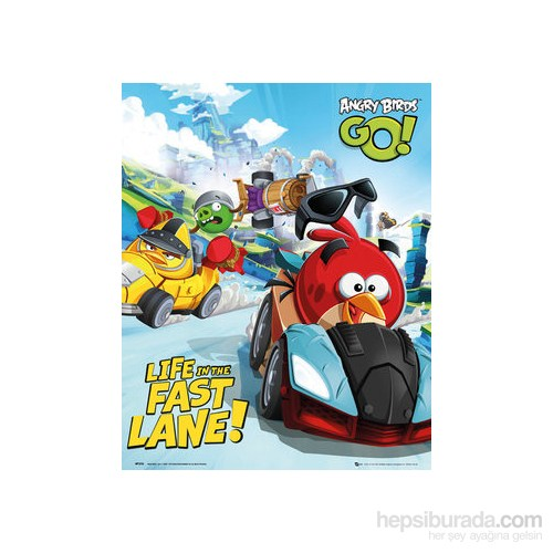 Angry Birds Racing Mini Poster