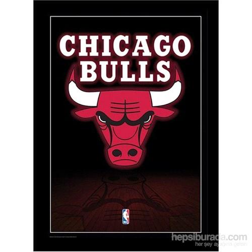 Chicago Bulls Maxi Poster