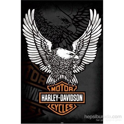 Harley Davidson--Eagle Maxi Poster