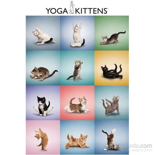 Yoga Kittens Grid Maxi Poster