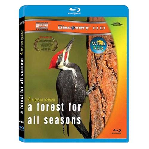 A Forest For All Seasons (Dört Mevsim Ormanı) (Blu-Ray Disc)