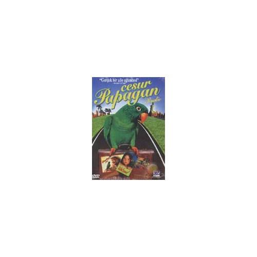 Paulie (Cesur Papağan Paulie) ( DVD )
