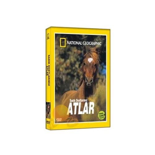 National Geographic: Sadık Dostlarımız Atlar