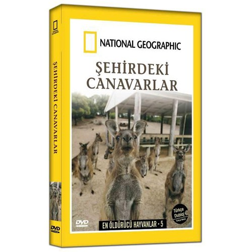 National Geographic: Şehirdeki Canavarlar