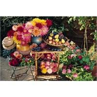 Jumbo 1500 Parça Puzzle Bahçede Meyve Tabağı