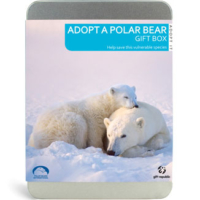 Giftrepublic Bir Kutup Ayısını Evlat Edin - Adopt A Polar Bear
