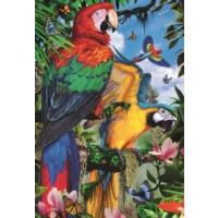 Jumbo Pretty Parrots, 1000 Parça Puzzle