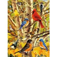 Ravensburger Puzzle Güz Kuşları, 500 Parça Puzzle