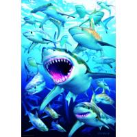 Educa Puzzle Shark Club 500 Parça Puzzle