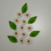 Desenli Keçeler Beyaz Papatya ve Yaprak Desenli Keçe Aplike