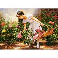 1000 Parça Castorland Gül Bahçesi Puzzle
