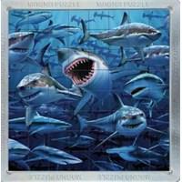 Piatnik Puzzle Köpek Balıkları (64 Parça - 3 Boyutlu - Magnet)