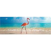 Heye Flamingo (1000 Parça, Panorama)