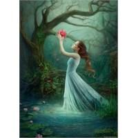 Heye Red Bloom (1000 Parça)