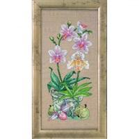 Permin 45X23 Saksıda Orkide Desenli Etamin Kiti - 705127