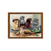 Riolis Kedi Ailesi Desenli Etamin Kiti - 1327