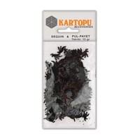 Kartopu Siyah Dinazor Figürlü Figürel Pul Payet - Pp9