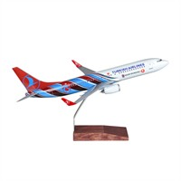 Tk Collection B737/800 1/100 Ts Model Uçak